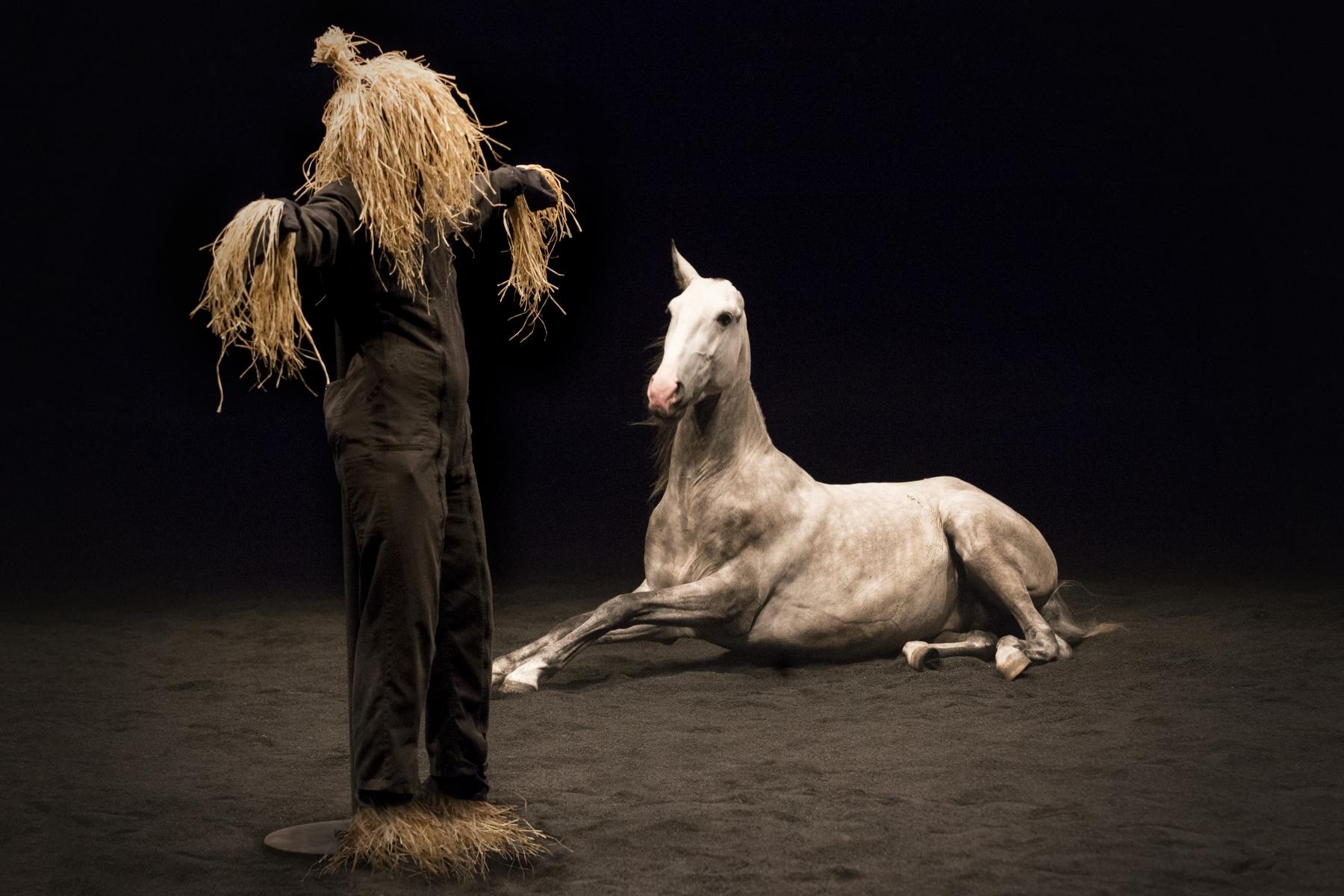 Theatre_Equestre_ZINGARO (3)
