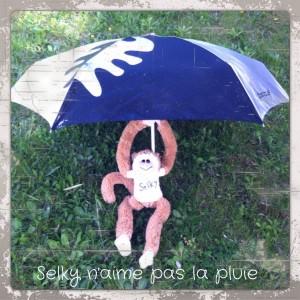 130426 Selky_naime_pas_la_pluie