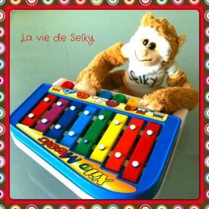 130501 Selky_partage_sa_playlist