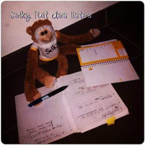 130522 Selky fait des listes