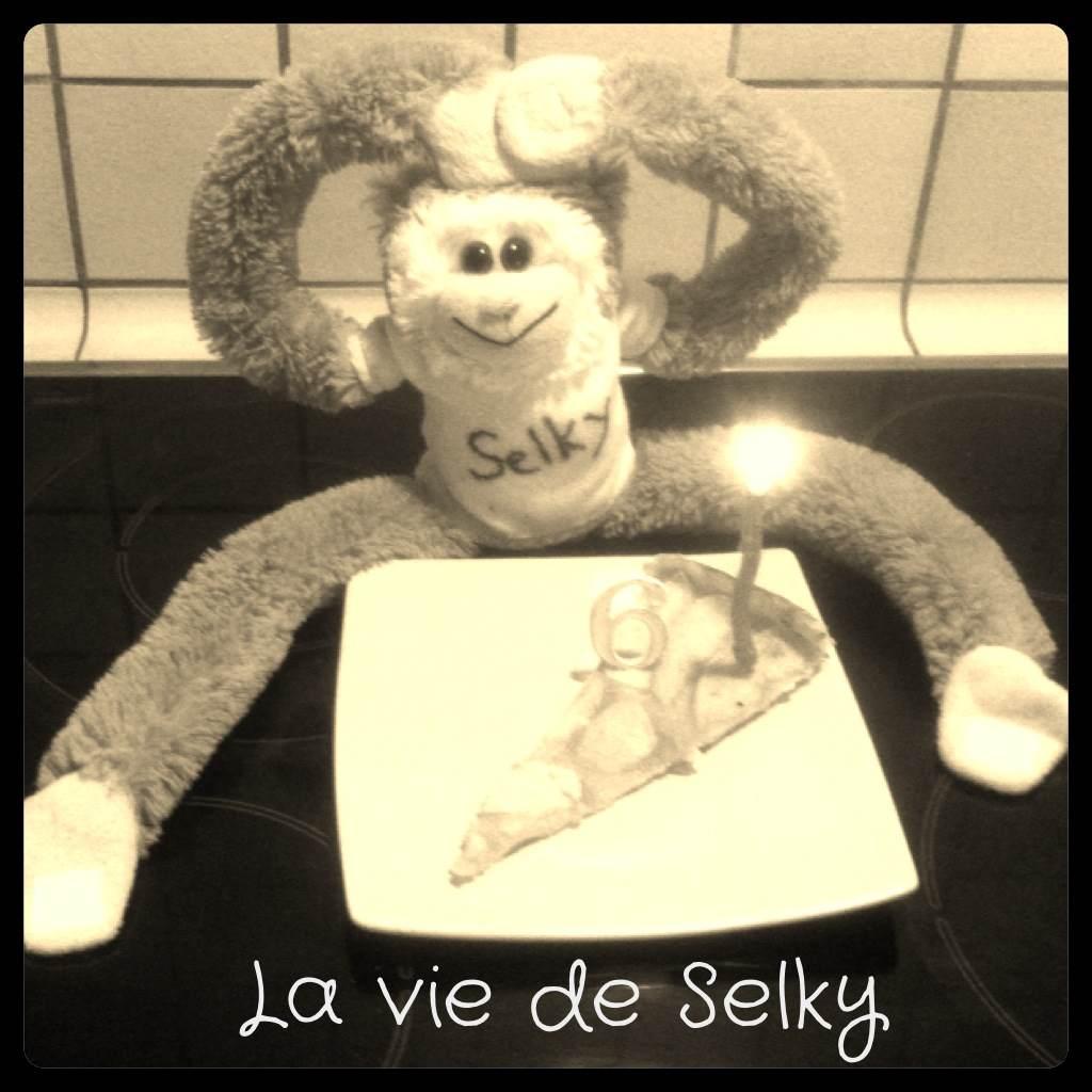 130715 Selky_fiere