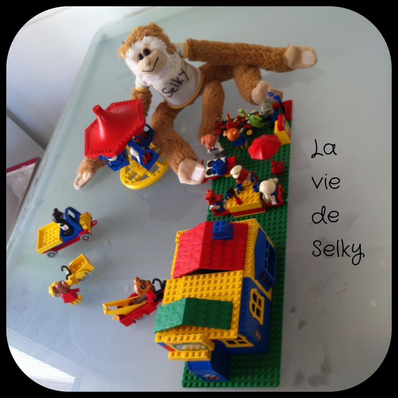 170713 Selky_joue_aux_legos