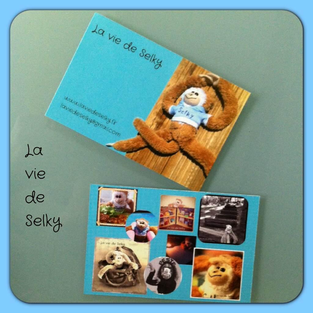 131021 Selky_a_des_cartes_visites (2)