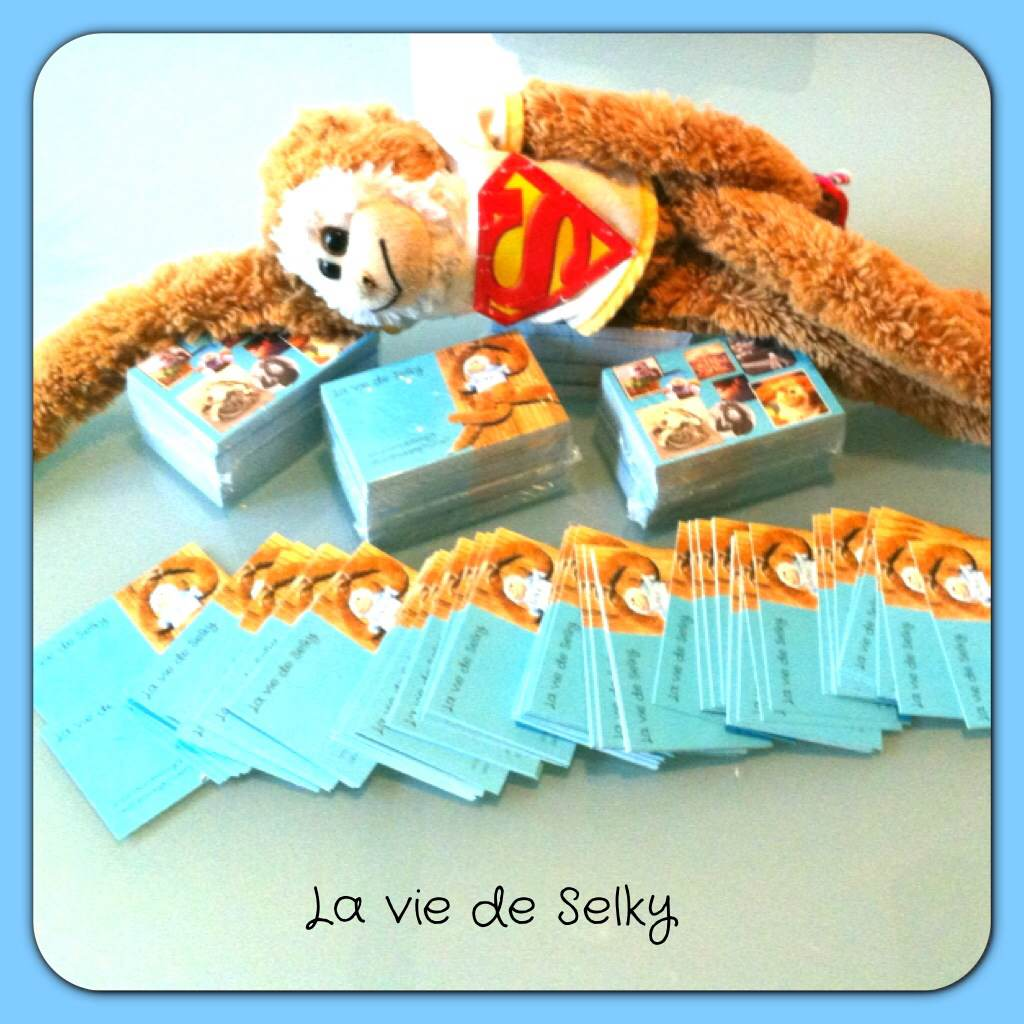 131021 Selky_a_des_cartes_visites (3)