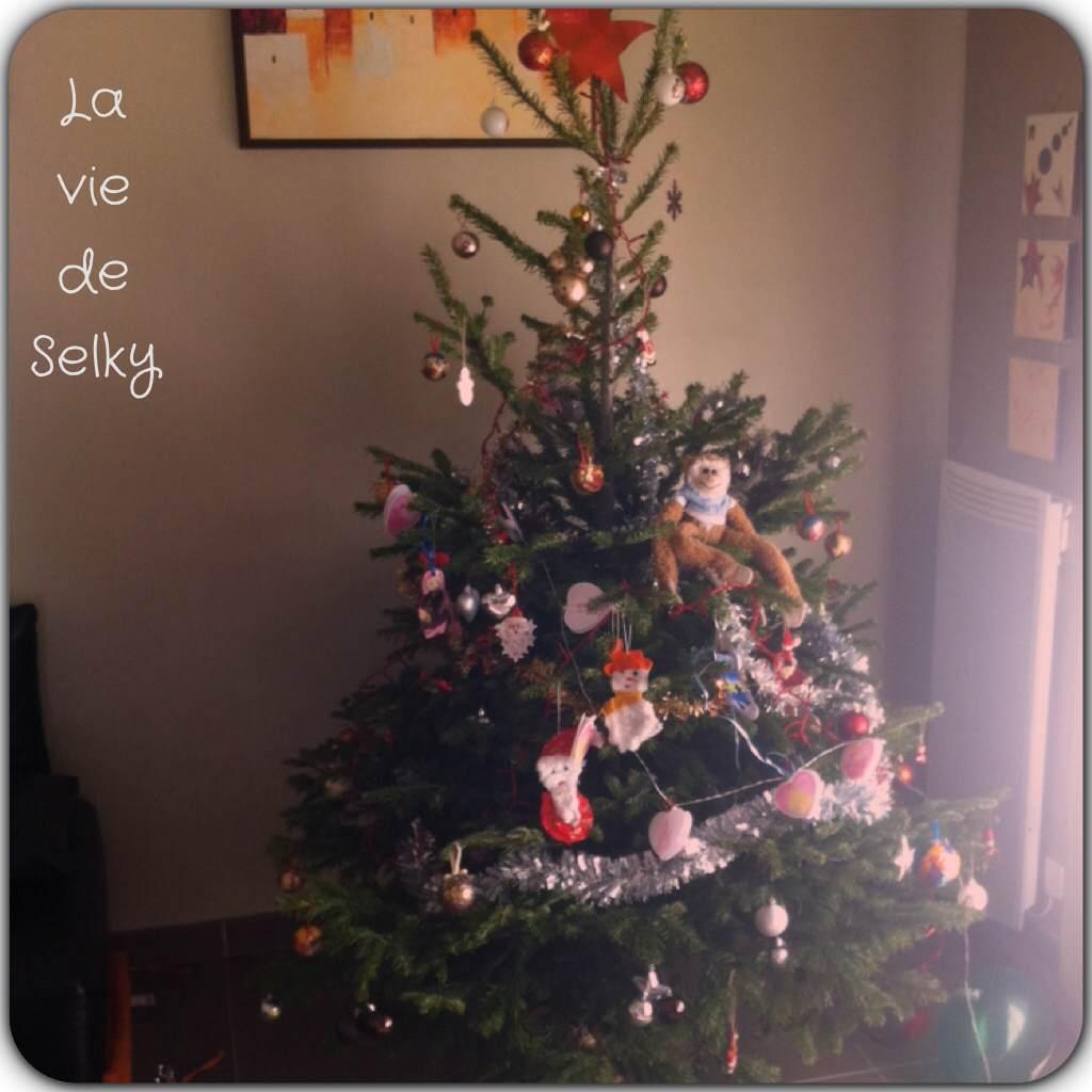 131207 Selky_est_mitigee_sur_Noel (2)