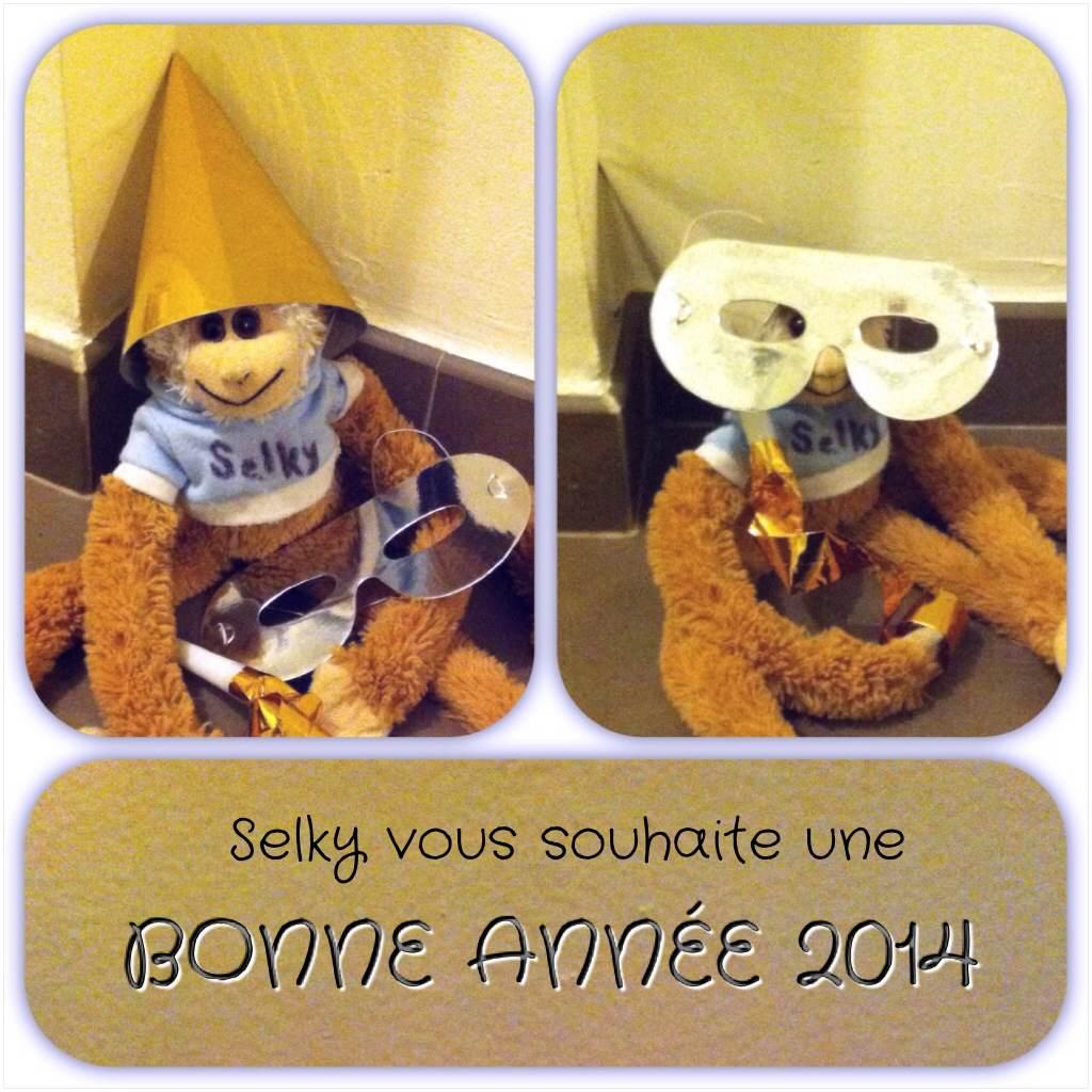 131231 Selky_bonne_année (2)