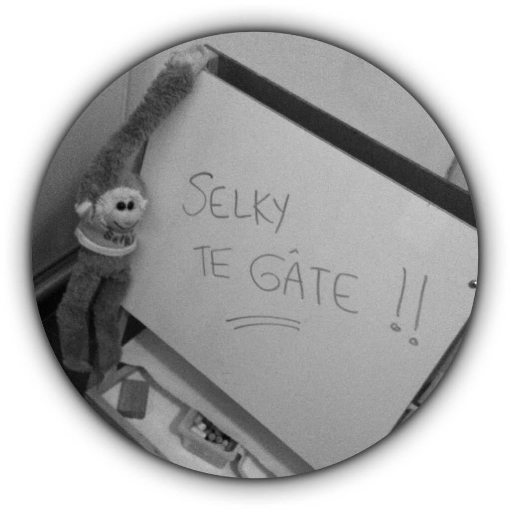 141414 Selky_te_g