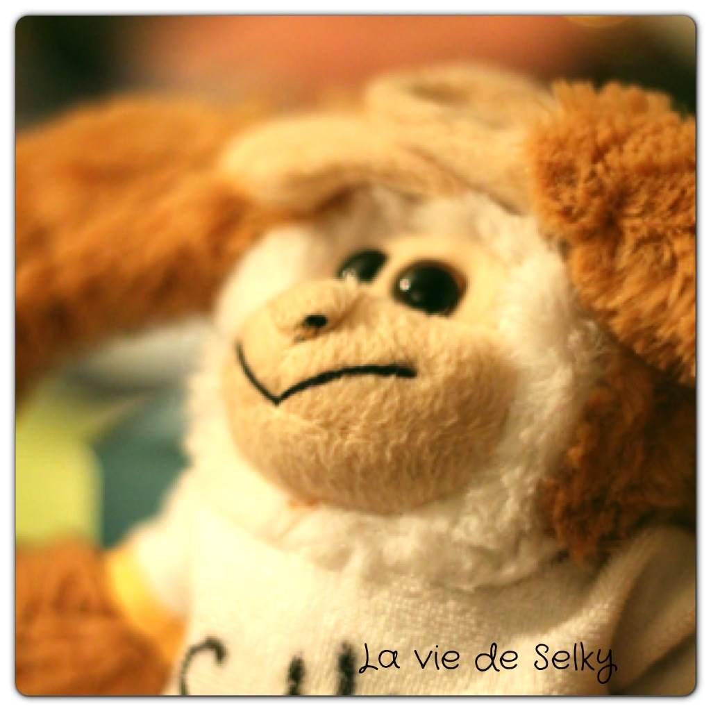 130603 Seky_plus_peur_foudre