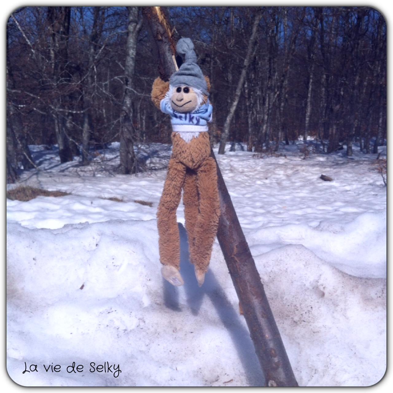 140315 Selky_miniweekend_neige1