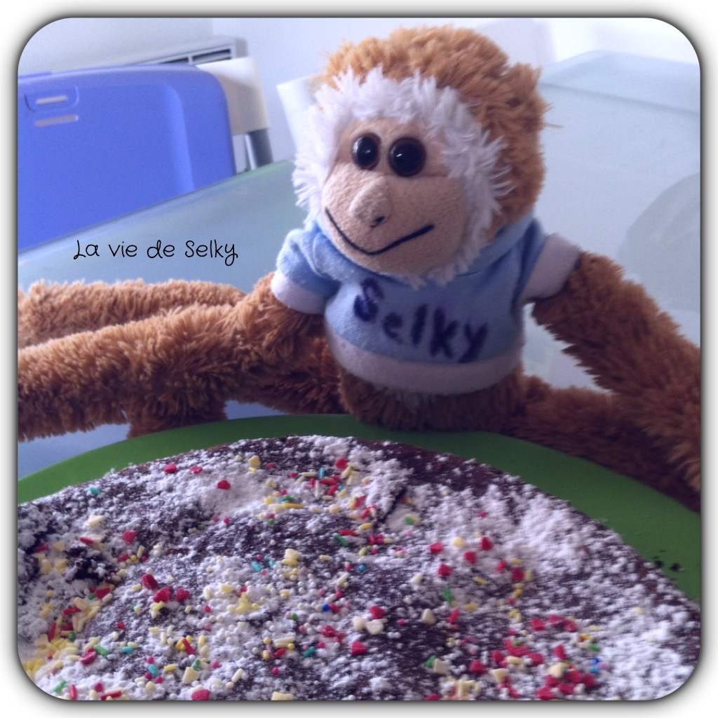140326 Selky_cuisine_moelleux_chocolat_petits_suisses