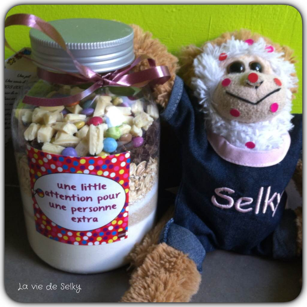 140624 Selky_cadeau_fin_annee_sos_cookies (2)