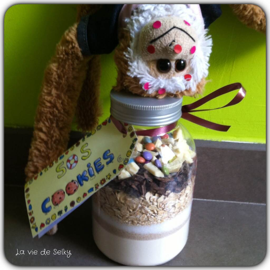 140624 Selky_cadeau_fin_annee_sos_cookies (3)