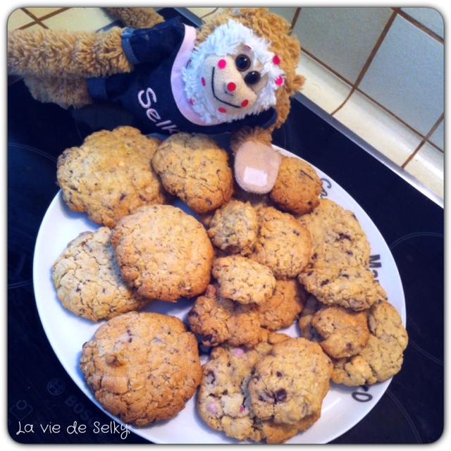 140624 Selky_cadeau_fin_annee_sos_cookies (4)