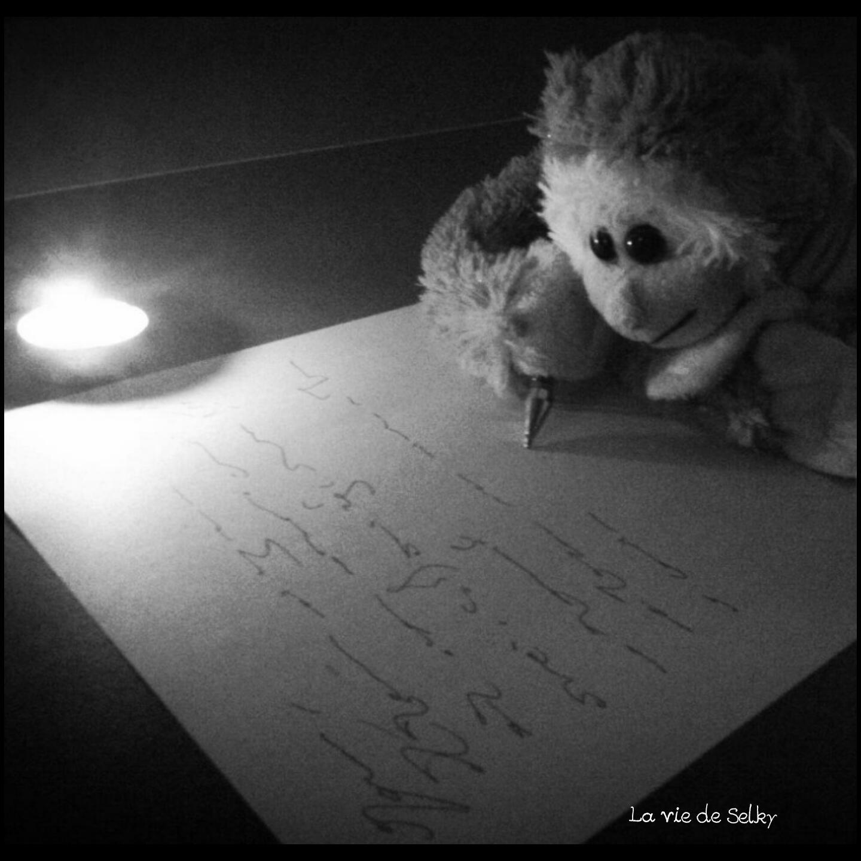 150123 Selky_note_jolis_mots