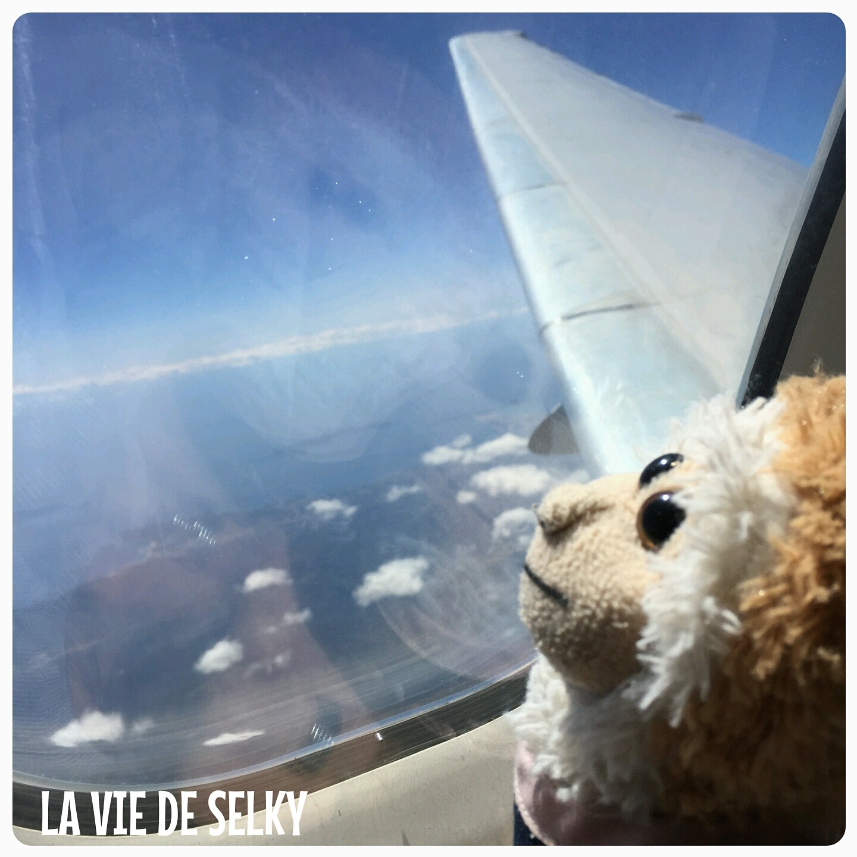 150520 Selky_avion_venise (11)