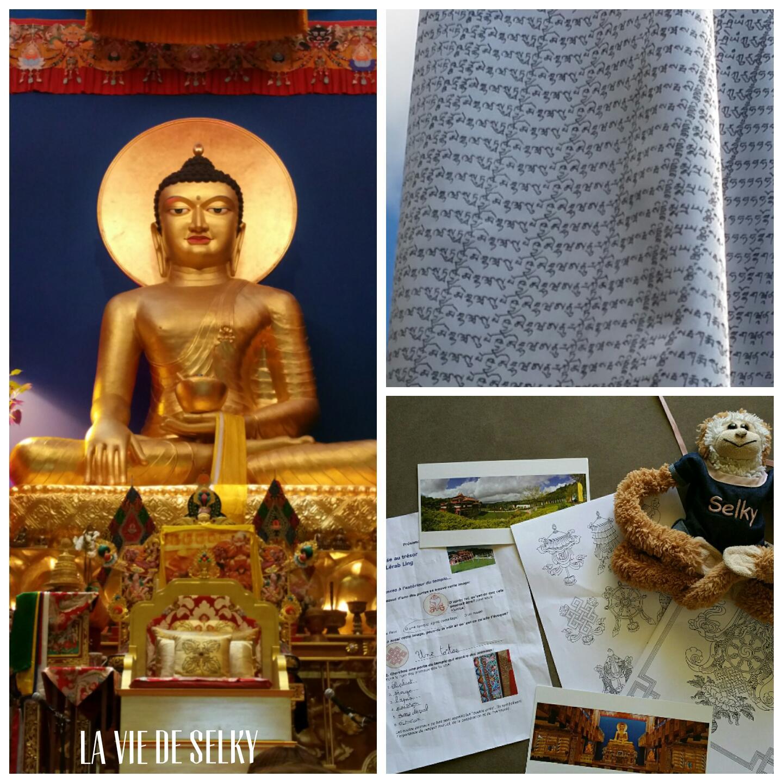 Selky a visité le temple bouddhiste Lerab Ling 3