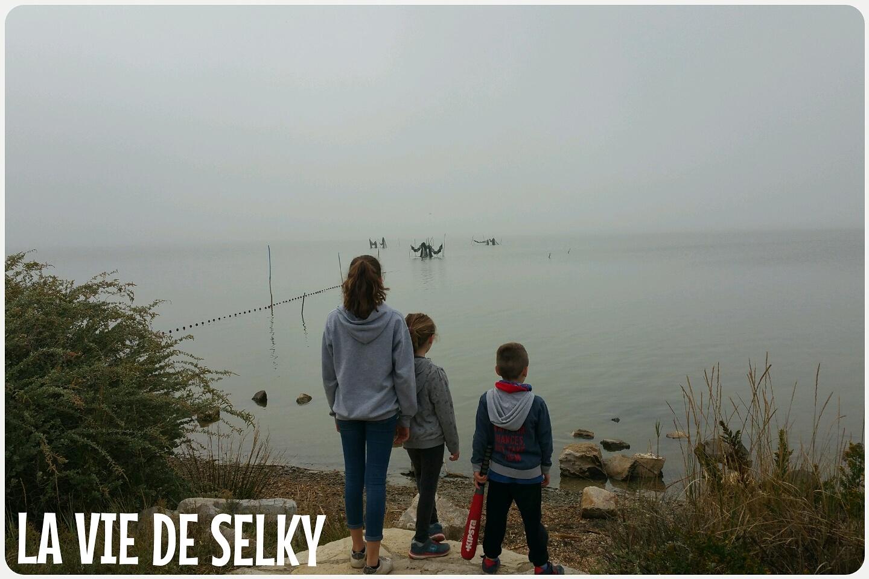 Selky rewinde Octobre S17E104